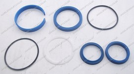HYSTER HYDRAULIC SEAL KIT (LS3832)