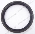 TCM OIL SEAL OUTER (LS4498)