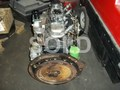 ISUZU C240 FULLY RECONDITIONED ENGINE