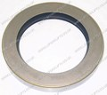 HYUNDAI OIL SEAL (LS4453)